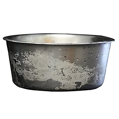 Polar Bowl by Neater Pet Brands - Freezable Stainless Steel Water Bowl for Pets - Keep Water Cold For Hours