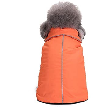 Amazon.com: Pet Cold Weather Coat, Small Dog Vest Harness