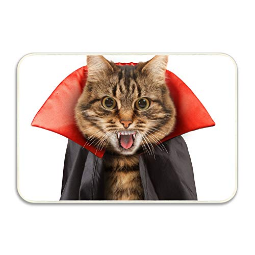 FunnyLife Pretending To Be A Very Fierce Cat Durable Indoor/Outdoor Door Mats Home/Bedroom/Living Room/Garden Doormats,Machine-washable