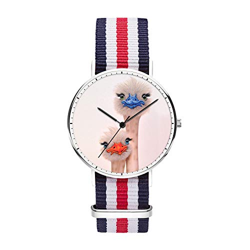 Customized Silly Ostrich Wrist Watch, Blue White Red White Blue Nylon Watch Band Silver Dial Plate Men 40mm Fashionable Wrist Watch for Men