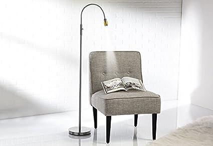 Merveilleux Focused Beam Natural Light Floor Lamp   Nickel Shade