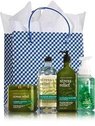 Bath & Body Works Stress Relief Eucalyptus Spearmint Cand...