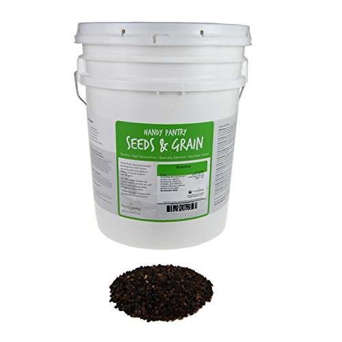 30 Lb Bucket (Bulk Organic Buckwheat Sprouting Seed - 30 Lbs - Unhulled - Organic - Gardening, Growing Salad Greens, Sprouts & Food Storage - Buck Wheat Sprout)