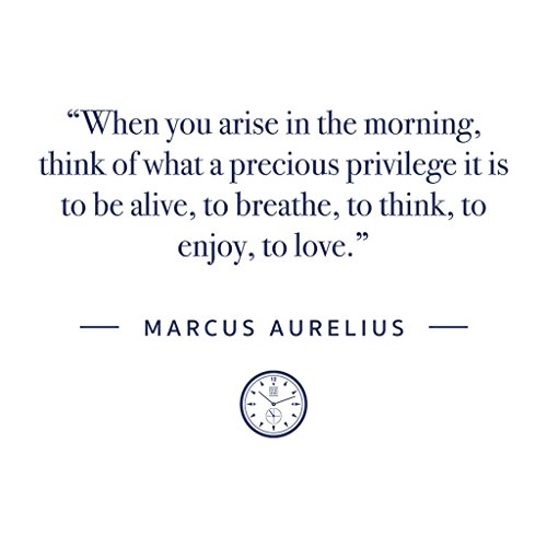 Arise Quote Aurelius Women's Morning In White Hooded The Marcus Stoic Sweatshirt Time wqtn4Bfq0