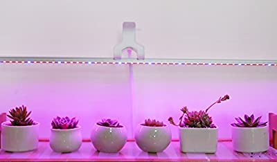 Ledy 1M 5050 IP67 Casing Waterproof LED Strip Plant Flower Growing Grow Light Red Blue 4:1 DC 12V