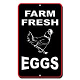 Farm Fresh Eggs Novelty Funny Metal Sign 8 in x 12 in