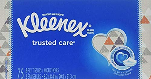 Trusted Care 2-Ply Tissues, 8.2in/20.8in, 4 Boxes 75 Count per Box