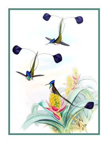 (Orenco Originals Spatula Winged Hummingbirds by Gould Bird Counted Cross Stitch Pattern)