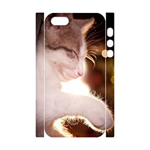 3D Bumper Plastic Customized Case Of Lovely Cat for iPhone 5,5S by icecream design