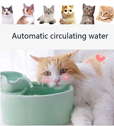 (KKKFFFN Pet Water Fountain Pet Water Fountain, Ceramic Smart Cat Automatic Circulation Drinking Water Ultra-Quiet Mobile Water Heater (Color : Green))