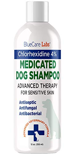 Chlorhexidine 4% Shampoo for Dogs With Itchy Irritated Skin - Medicated Dog Shampoo for Skin Allergies - Anti Itch Shampoo for Dogs + Antibacterial Antifungal Shampoo for Sensitive Skin + Oatmeal