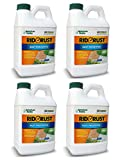 American Hydro Systems RR1 Rid O' Rust 2X Concentration Stain Preventer, 1/2 Gallon Bottle, Pack of 4