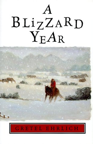 book cover of A Blizzard Year