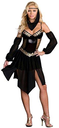 Sexy Arabian Harem Girl Costume, Small - Small (Arabian Costumes For Girls)