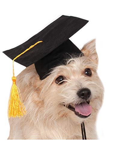 Rubie's Black Graduation Hat Pet Accessory, -