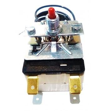 CubetasGastronorm Termostato Seguridad Freidora 230ºC FRE70/2-998196: Amazon.es: Hogar