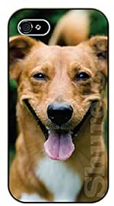 For Iphone 6Plus 5.5Inch Case Cover Case Big smile - black plastic case / dog, animals, dogs