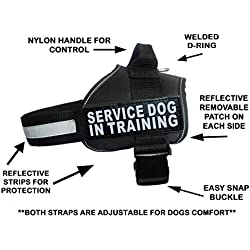 "Servcie Dog in Training Nylon Dog Vest Harness. Purchase Comes with 2 Reflective Service Dog in Training pathces. Please Measure Your Dog Before Ordering (Girth 30-42"", Black)"