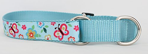 martingale dog collar butterfly