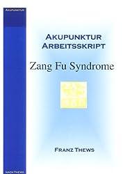 Akupunktur Arbeitsskript: Zang Fu Syndrome in der TCM