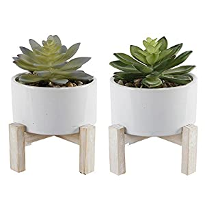 Flora Bunda Artificial Plant Artificial Succulent in Ceramic Planter with Wood Stand Pot 4 Inch Mid Century,Set of 2,White 3
