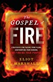 The Gospel of Fire: Strategies for Facing Your Fears, Confronting Your Demons, and Finding Your Purpose