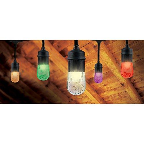 Enbrighten Outdoor String Lights: Enbrighten Vintage Seasons LED Warm White And Color