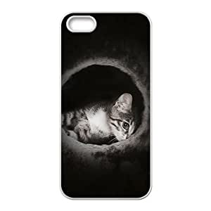 MMZ DIY PHONE CASECat In The Nigh Hight Quality Plastic Case for Iphone 5s