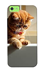 Podiumjiwrp Sanp On Case Cover Protector For Iphone 5c (ginger Cat ) For Christmas Day's Gift