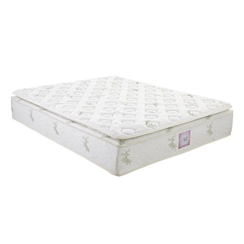 Signature Sleep Signature 13 Inch Independently Encased Coil Pillow Top Mattress with CertiPUR-US certified foam and Soft Bamboo Cover, Queen