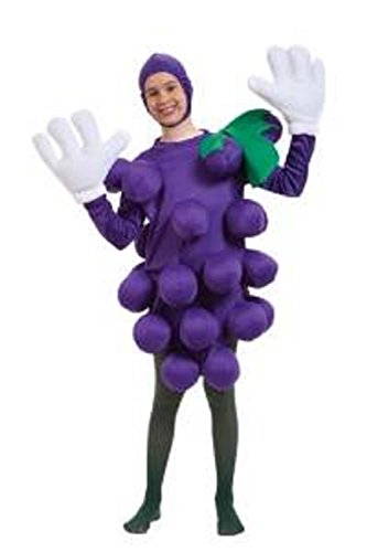 Grape Costume Balloon (Childs Purple Grapes Costume STD)
