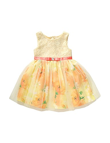 Sweet Heart Rose Baby Girls' Lace Bodice Floral Mesh Easter Dress, Yellow/Multi 18M