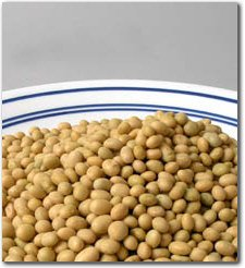 25 Lbs Organic Soybeans - Certified Organic Soy Beans for Soymilk, Tofu, Food Storage & more. by Handy Pantry