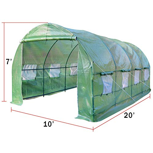 Strong Camel Walk-in Greenhouse 20′ X 10′ X 7′ Large Portable Garden Hot House