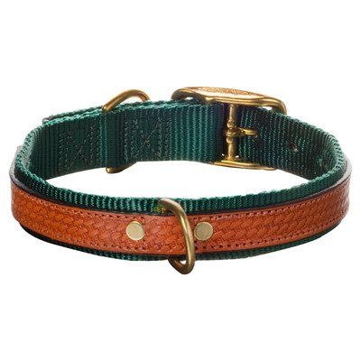 Woofwerks Cooper Overlay Collar, 1 by 18-Inch, Hunter Green