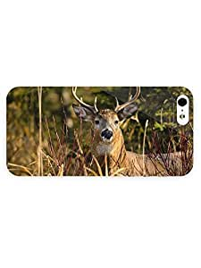 3d Full Wrap Case for iPhone 5/5s Animal Deer61