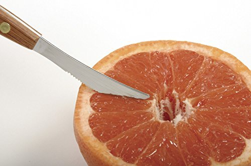 Stainless Steel Squirtless Grapefruit Knife