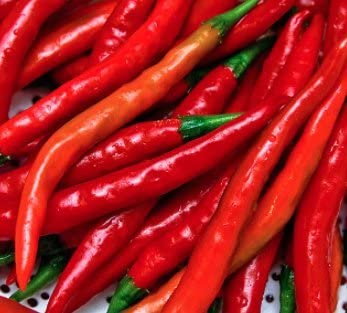50//300 Seeds Chili Long Red Cayenne Drying Sauce Variety Very Old
