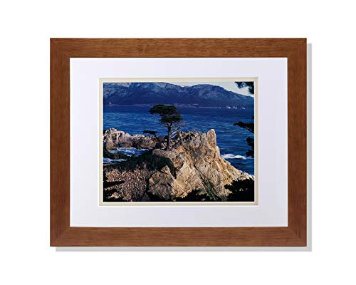 (Art Prints Inc The Lone Cypress Tree Pebble Beach Ocean Photo W/V Matted Picture Honey Framed)