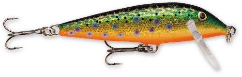 Rapala Countdown 11 Fishing lure, 4.375-Inch, Brook Trout