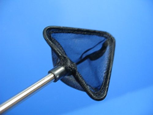 UP Triangle Fish/Shrimp Net 5.5cm (D-299-5.5-T) by Unknown