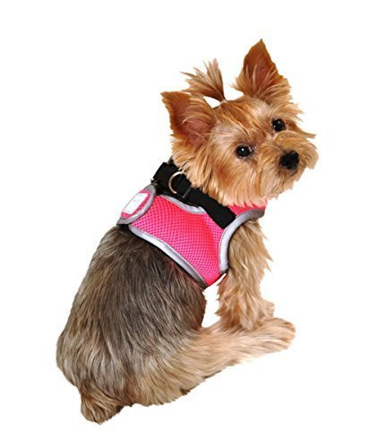 neon harness for dogs - 8