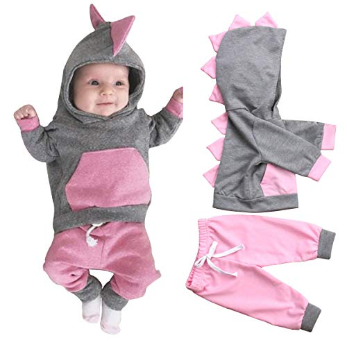 Baby Girl Clothes Outfit Hoodie Sweatshirt Long Sleeve Dinosaur Hood Top Pants Outfits Set (12-18 Months, Pink)
