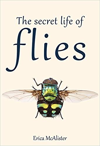 the secret life of bees download free