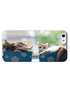 3d Full Wrap Case for iPhone 6 4.7 Animal Kittens In Boxes