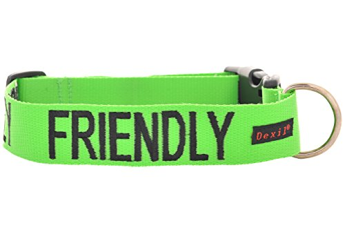 friendly-green-color-coded-s-m-l-xl-buckle-dog-collar-known-as-friendly-prevents-accidents-by-warnin