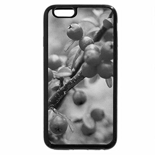 iPhone 6S Plus Case, iPhone 6 Plus Case (Black & White) - Beautiful Berry Branch