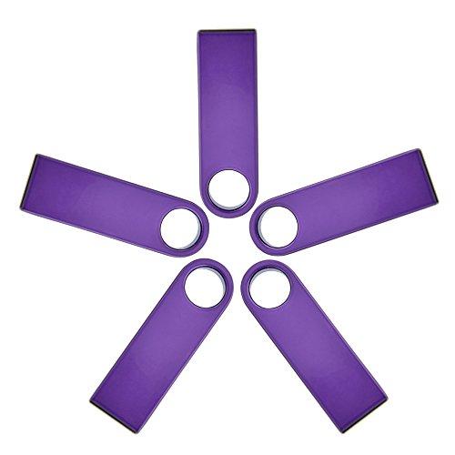 4GB USB 2.0 Flash Drive Pack of 5 - Kepmem Stylish Thumb Drives Metal Casing Mini Memory Stick - Purple Bulk Jump Drives Multipack