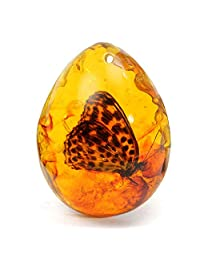 ECYC Beautiful Amber Butterfly Pendant Necklace Gemstone for DIY Jewellery