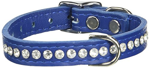 """OmniPet Signature Leather Crystal and Leather Dog Collar, 12"""", Blue"""